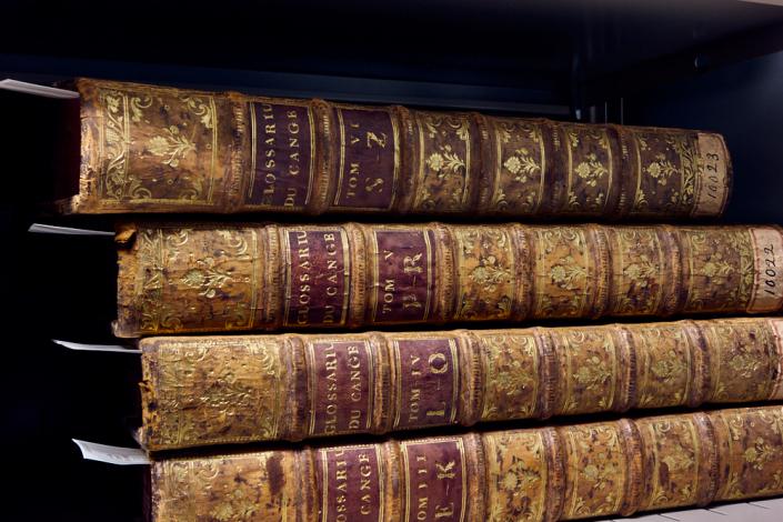 Lightroom: Bibliothèque de base