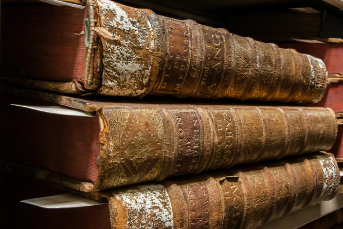 Capture One: Bibliothèque